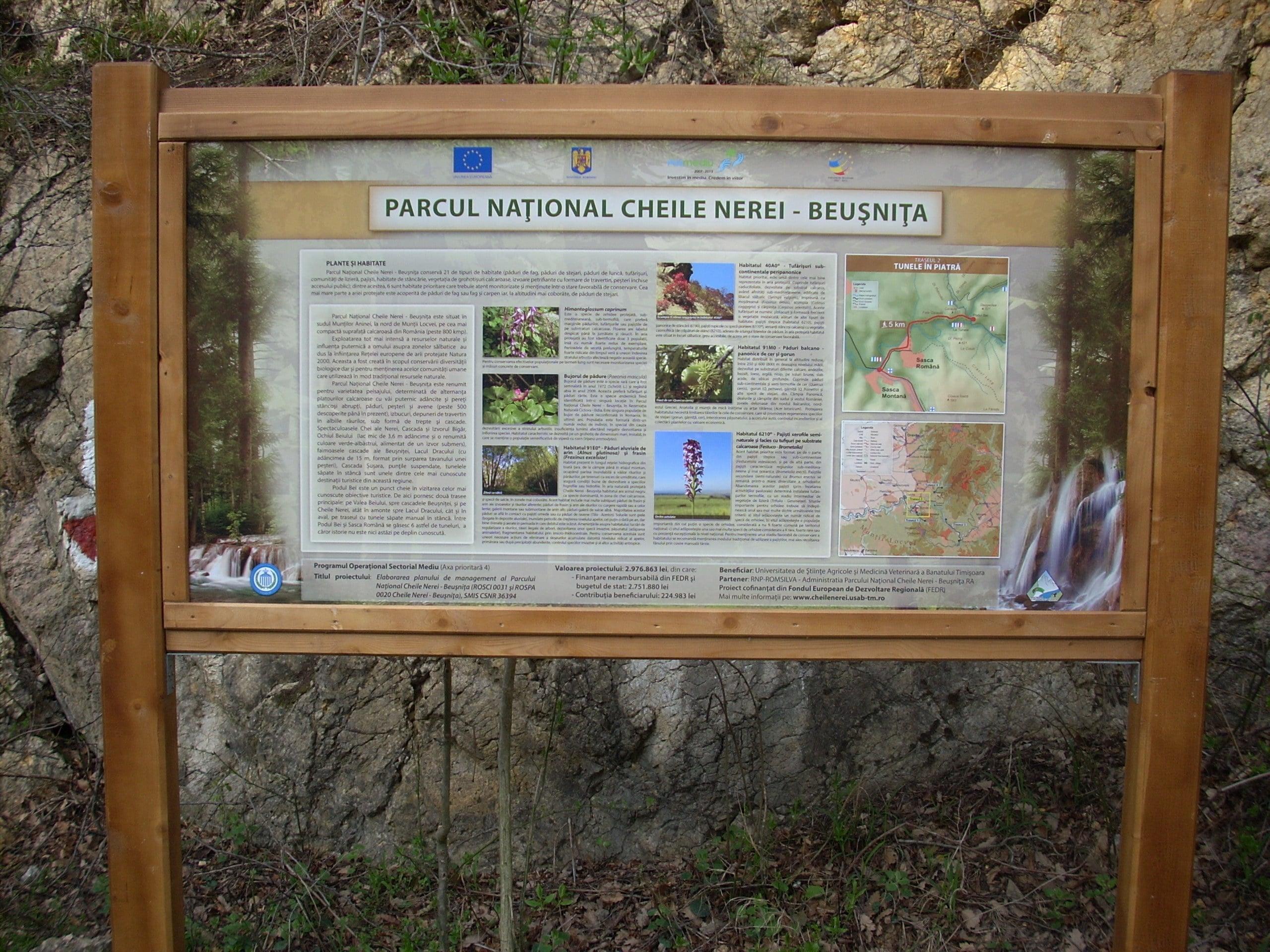 obiective turistice Rezervatia Cheile Nerei