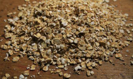 Biscuiti simpli, dulci si sarati din seminte