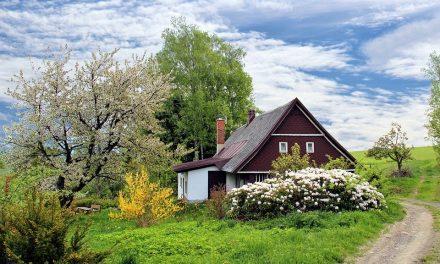 Beneficiile unei locuinte la tara departe de agitatie