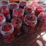 Cum putem consuma sfecla rosie zilnic?
